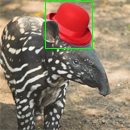 tapir diff box